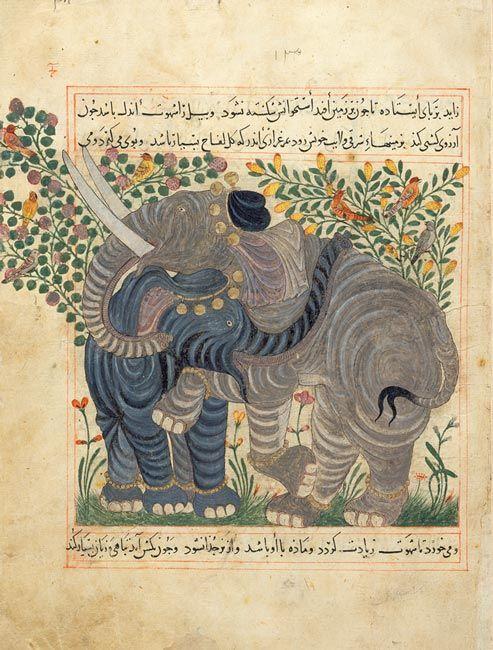 Two Elephants  Abu Sa'd' Ubayd-Allah ibn Ibrahim, known as Ibn Bakhtishu  Manafi al-Hayawan (The Benefits of Animals), in Persian  Persia, Maragha, dated 1294, 1297, or 1299