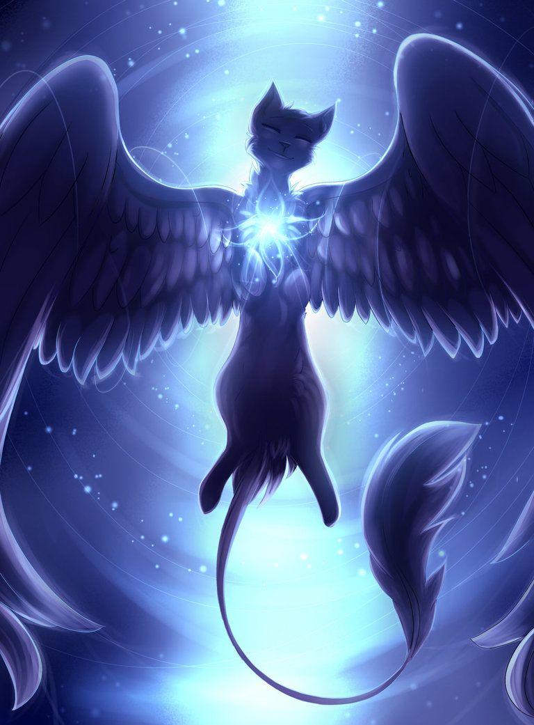 объясняется смотреть картинки котов с крыльями арты пятым