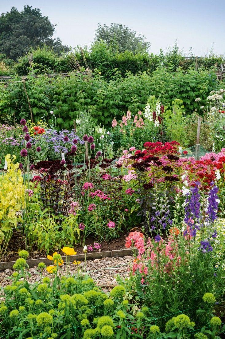 Image Result For Cut Flower Garden Plans Design