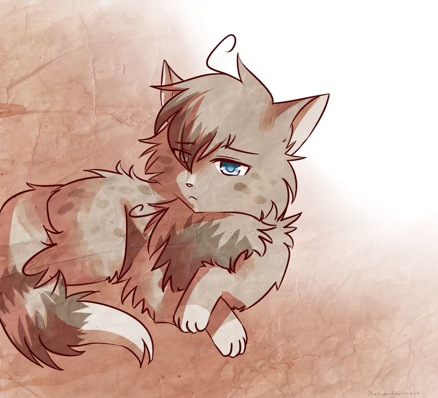 Warriors Don T Cry Pdf Book: Ashfur..... He Does NOT Deserve Squirrelflight.. Don't