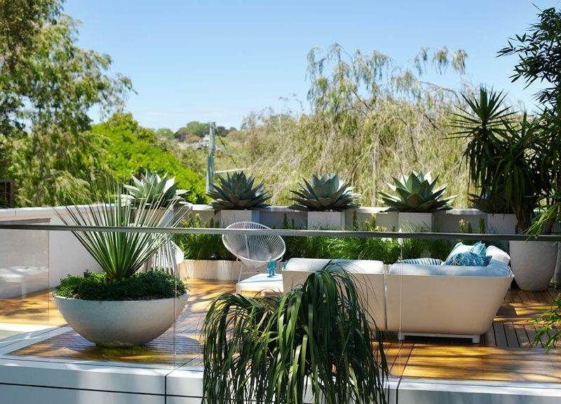 gro e pflanzk bel auf der terrasse mit immergr nen. Black Bedroom Furniture Sets. Home Design Ideas