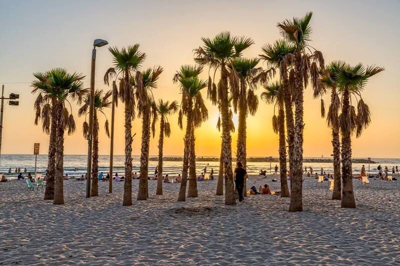 It's just what you do at sunset in Tel Aviv. Head to the