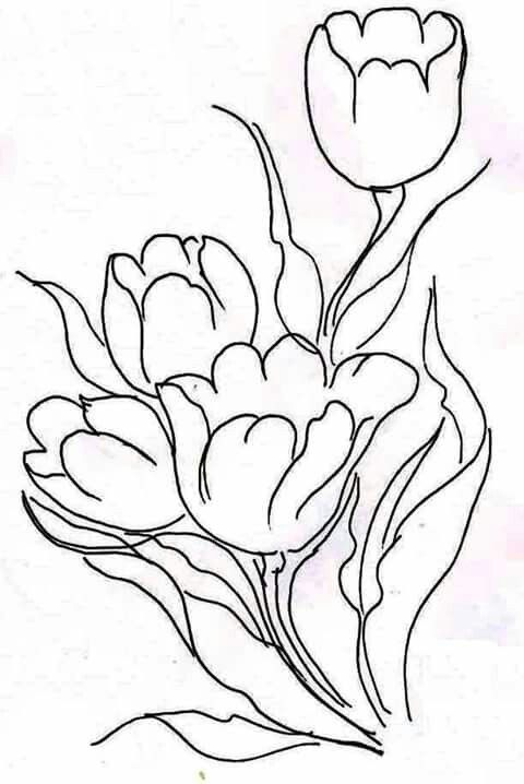 Pin By Emna Sakly On رسمات ورود Flower Drawing Flower Sketches Flower Coloring Pages