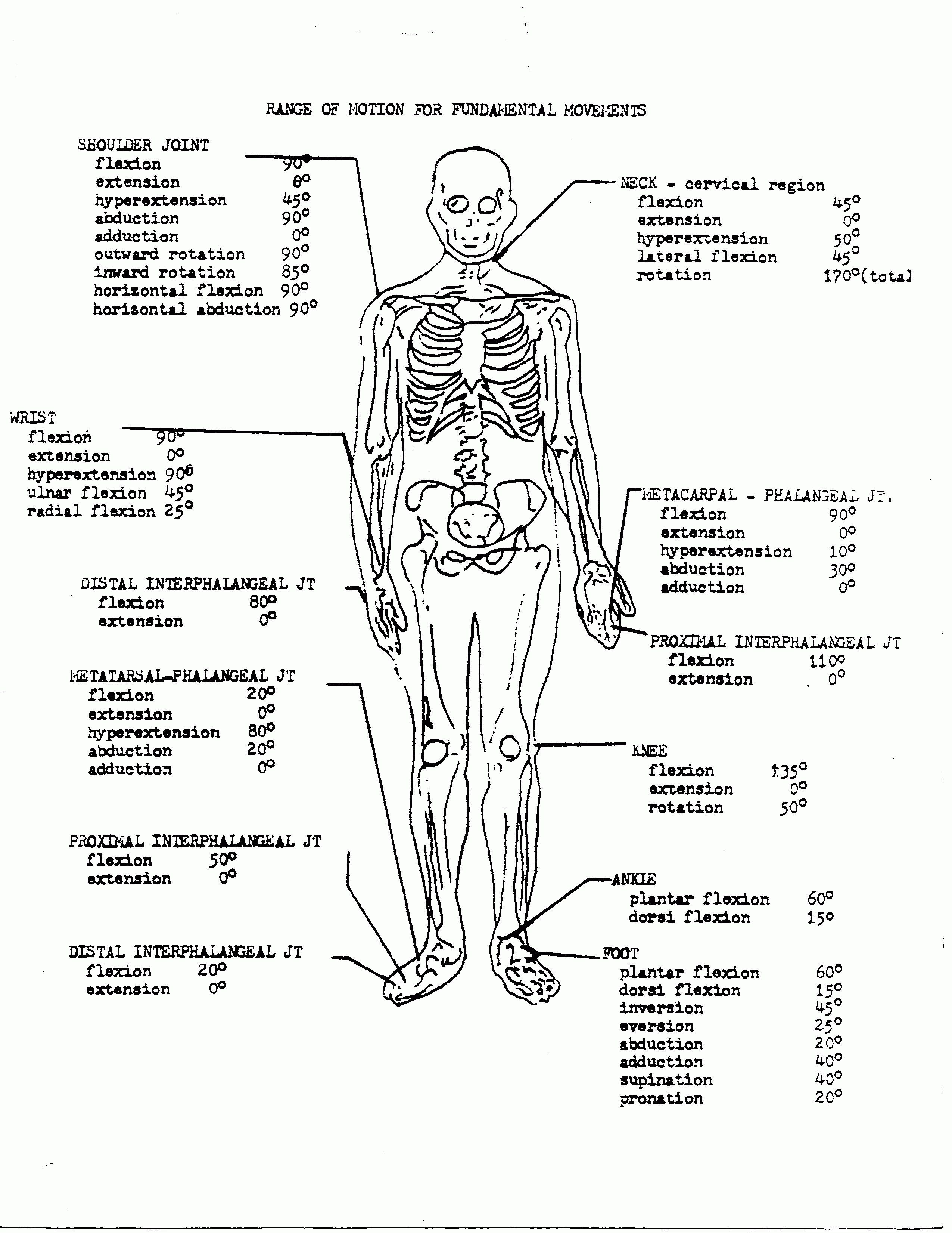 Anatomy And Physiology Coloring Workbook Answer Key Unique Coloring Book World Anatomy And Physiology Color Anatomy Coloring Book Coloring Books Coloring Pages