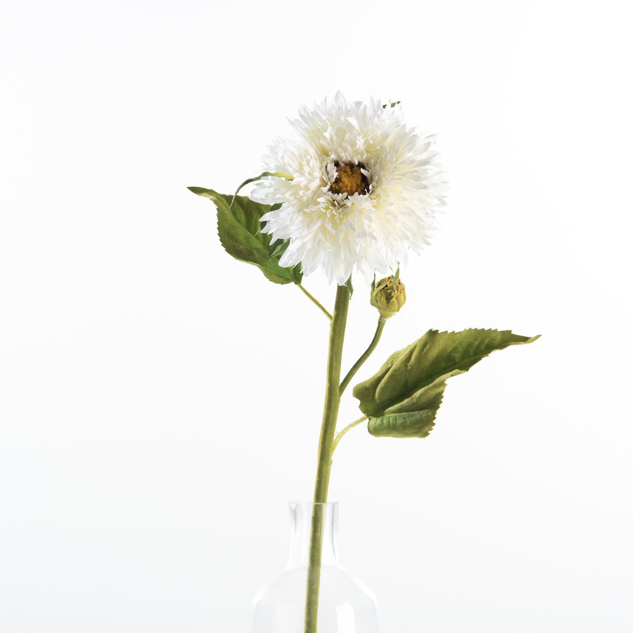 Aster Stem Aster Flower Flowers Faux Flowers