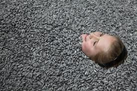 a little girl is having fun in the porcelain sunflower seeds- Exhibition Art