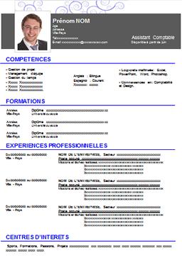 Modele 13 Cv Cv Words Resume Words Curriculum Vitae
