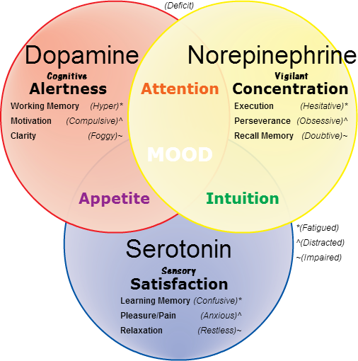 adhd dopamin noradrenalin