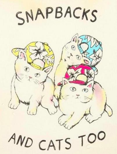 Snapbacks and cats too