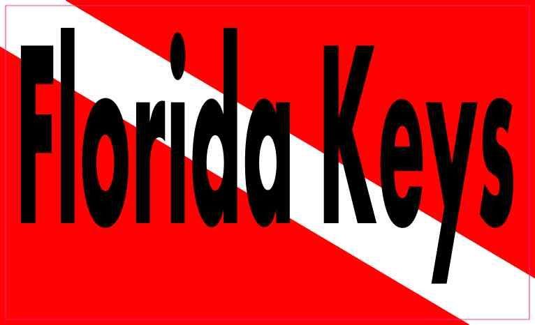 5in x 3in florida keys dive flag bumper sticker vinyl decal stickers decals stickertalk