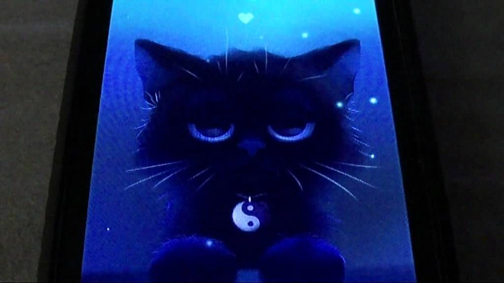Yin The Cat Live Wallpaper | chromebook accsessories | Cute