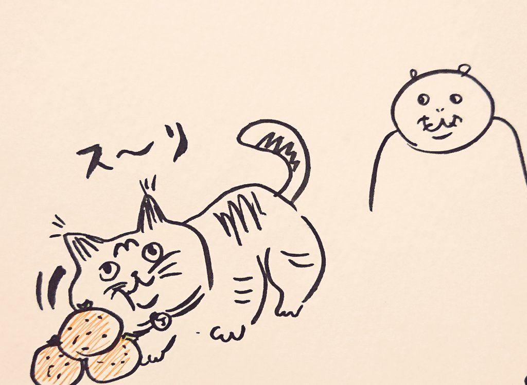 ネコ 殺意 の