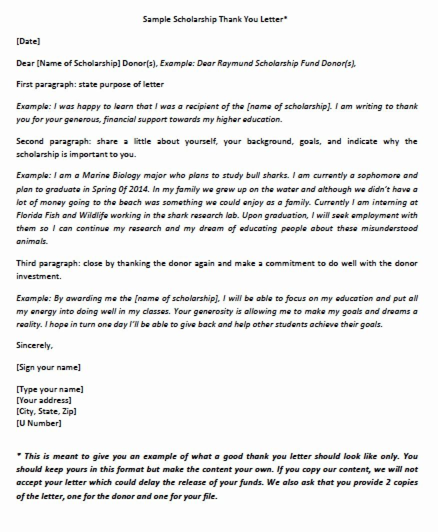 sample scholarship thank you letter inspirational download objective of cv for job resume ms word file marketing manager skills