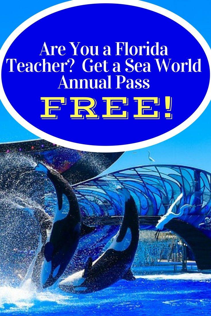 Florida Teacher Discounts >> Did You Know That Florida Teachers Can Get A Free Sea World
