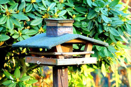 Viel Futter im Silo-Futterhaus Vogelhaus Vögel Futterhaus