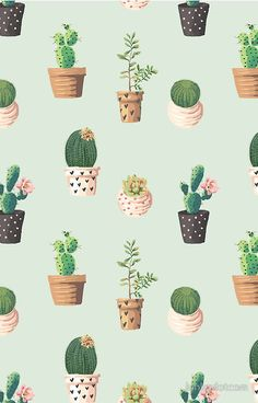 Pretty Cactus Wallpaper Floral Wallpaper Phone Iphone Wallpaper Illustration Iphone Wallpaper Pattern