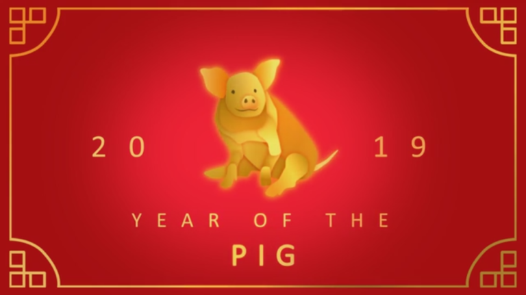 Image result for the year of the pig 2019