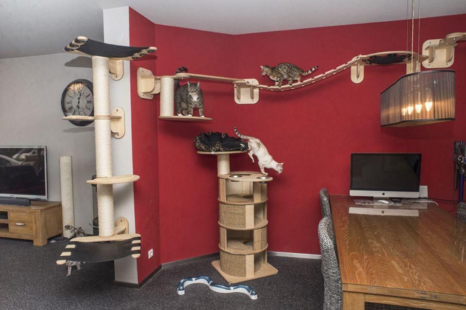vitocat designer kratzbaum katzenzimmer f r gro e katzen. Black Bedroom Furniture Sets. Home Design Ideas