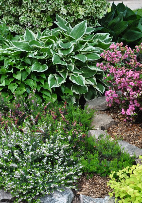 In my area, the garden tour season kicks off with the annual Canadian Cancer Society Tour in late May. Not only does the tour s...
