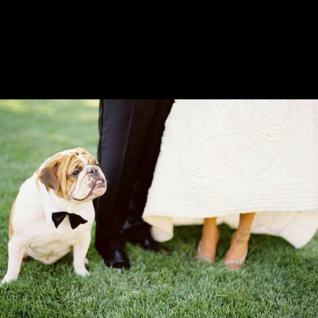 Great photo op..now if only Sherman would wear a bow-tie!