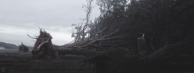 TREES Internet.jpg