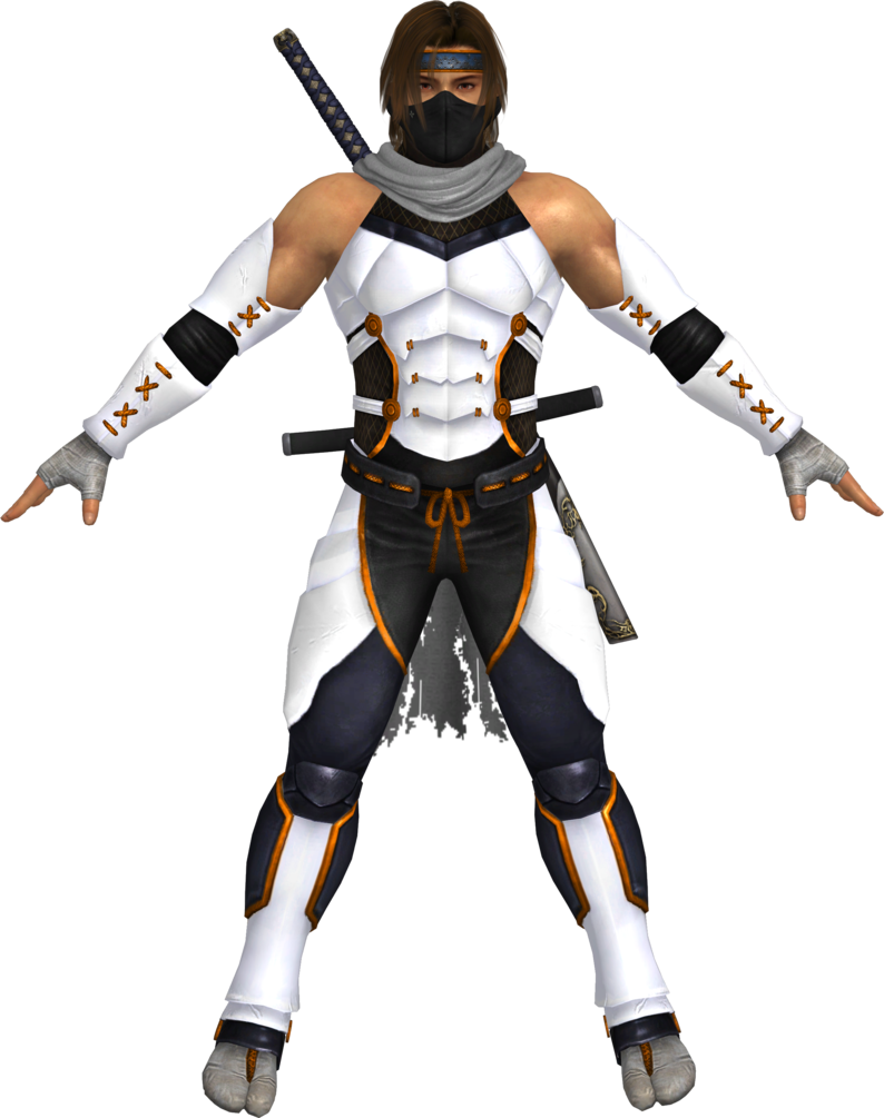 Hayate Ninja Gaiden Ninja Gaiden Hayate Dragon Ninja