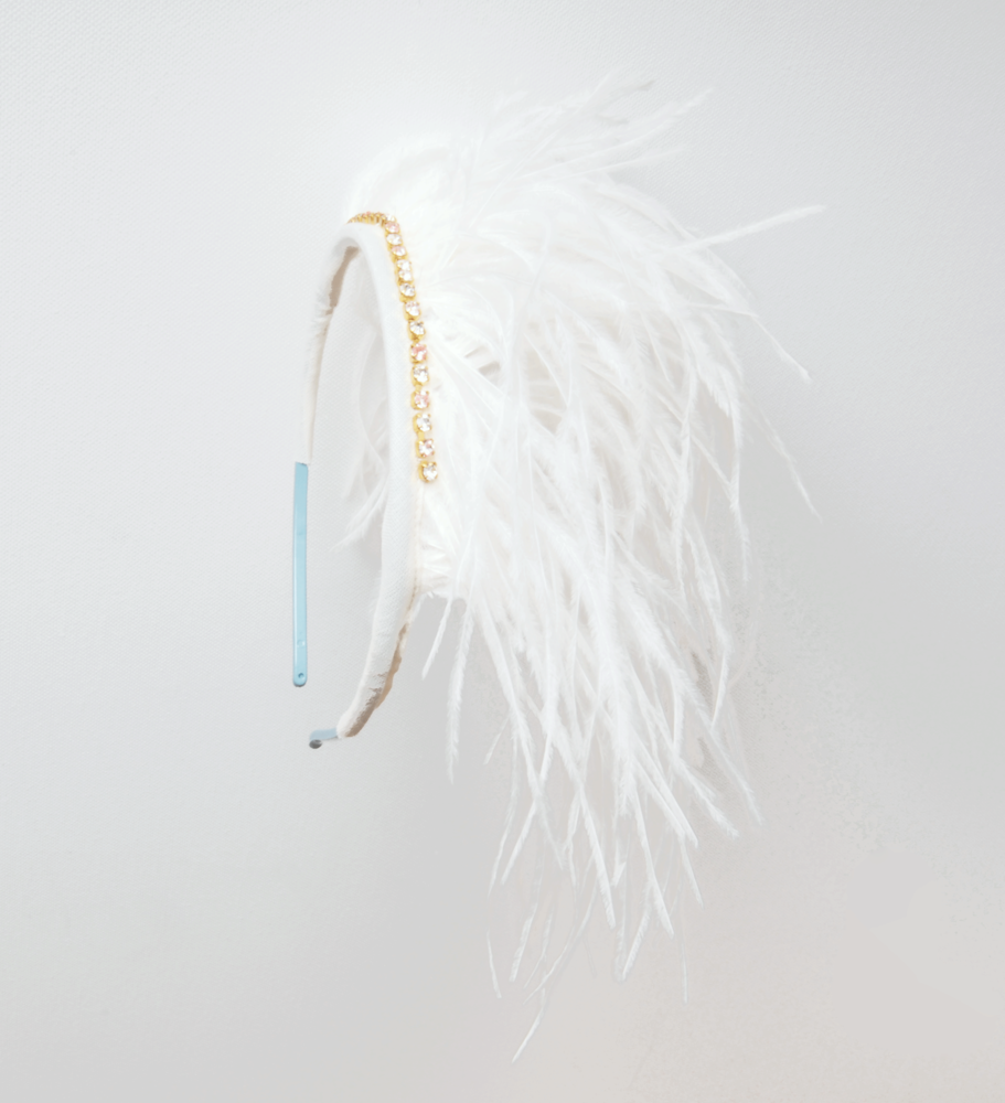 Rad feathered headband.