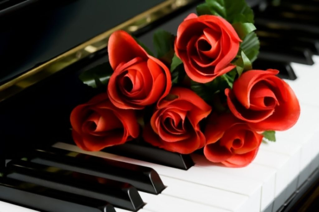 Roses On Piano Wallpaper