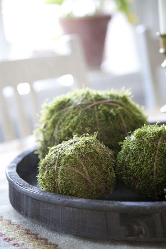 Vase Filler Moss Decor Moss Ball Decor Natural Moss Moss Orb