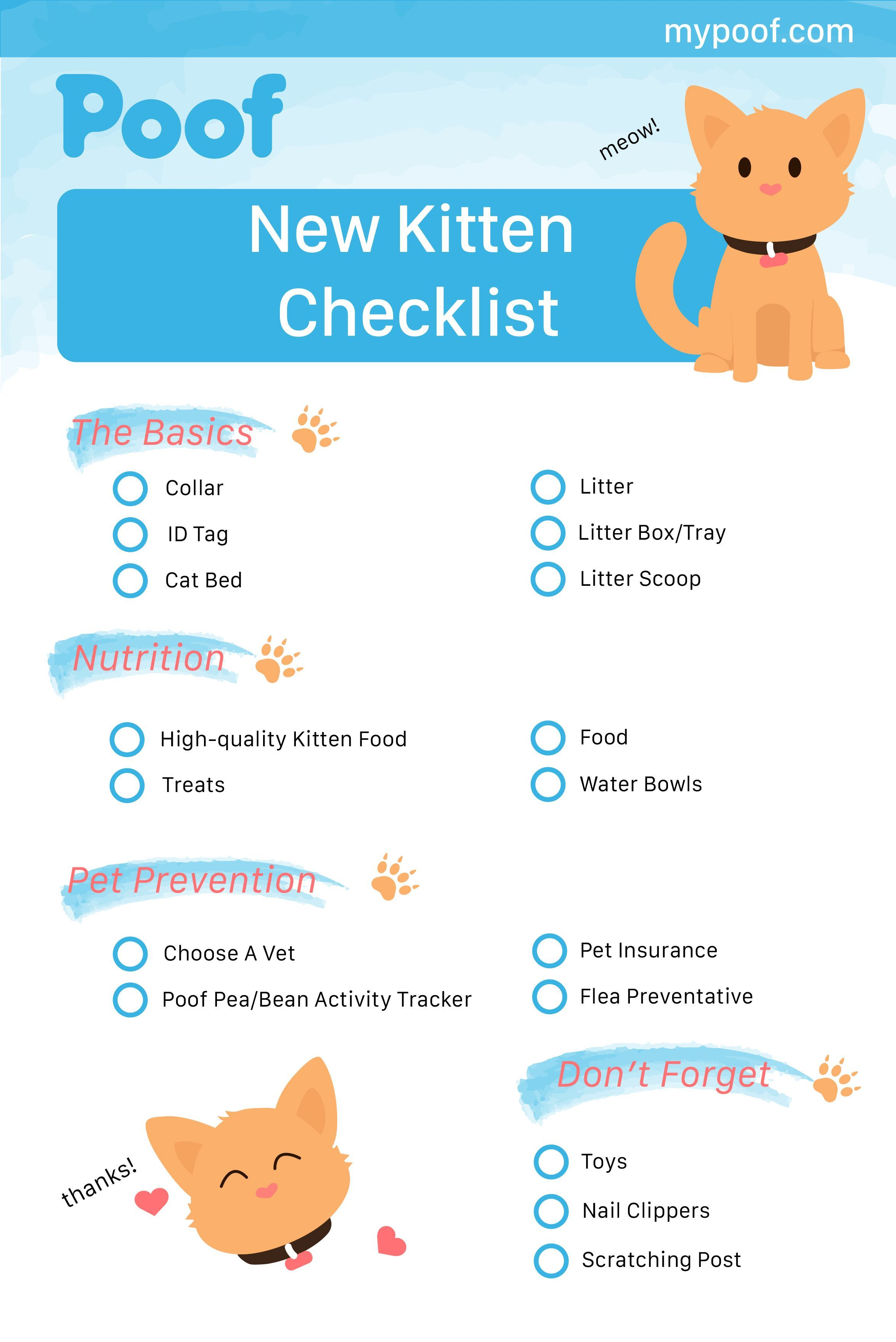 New Kitten Checklist Kittenchecklist Kittens Catscarechecklist Kitten Checklist Kitten Care Cat Care Tips
