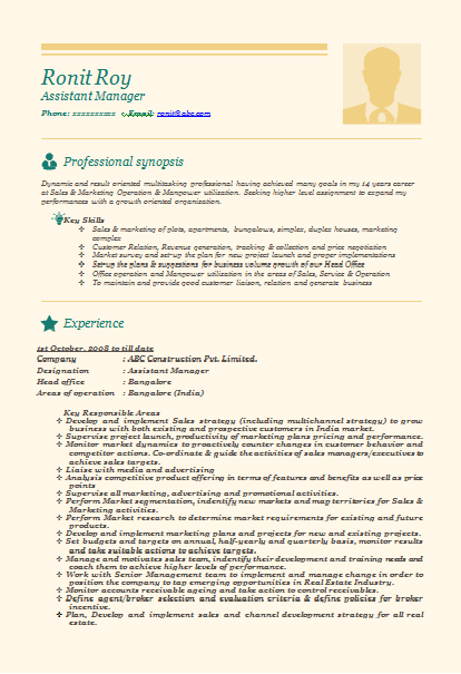 sample resume format for experienced it professionals doc - Resume Document Format
