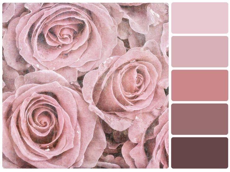 Die Nuancen Von Altrosa Colours In 2019 Pinterest Altrosa