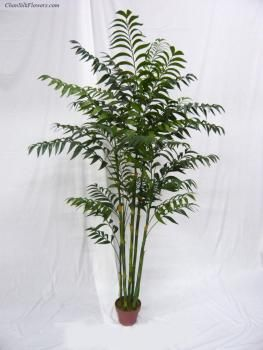 Bamboo palm x7 dx 6 potted chans silk flowers inc mr mrs bamboo palm x7 dx 6 potted chans silk flowers mightylinksfo