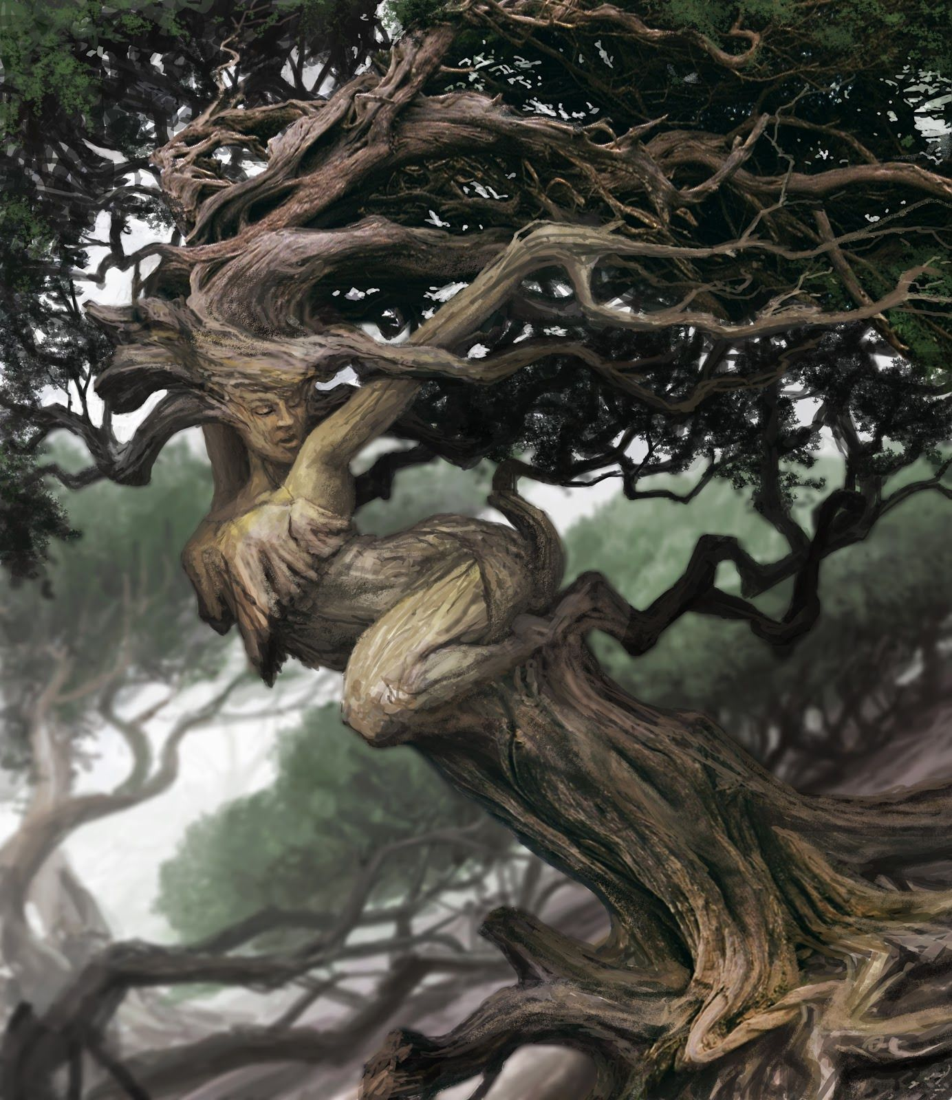 Fantasy art tree curves picture 2d fantasy tree for Beautiful drawings of trees