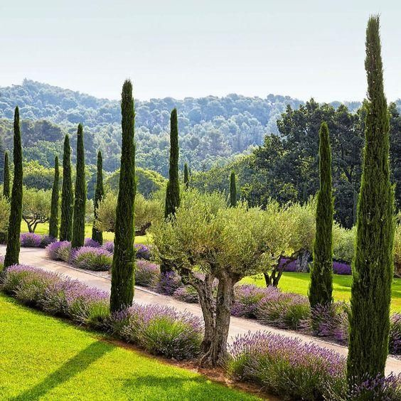 Tuscan House Style With Front Walkway And Italian Cypress: 8 Ways To Create Your French Garden