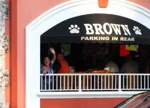 The brown boxer clearwater fl