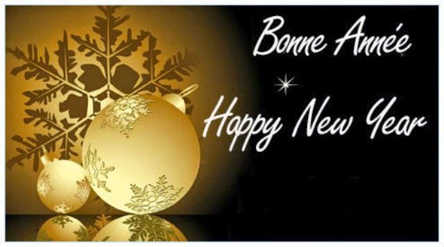 How Do You Say Happy New Year in French 2020 | Bonne année ...