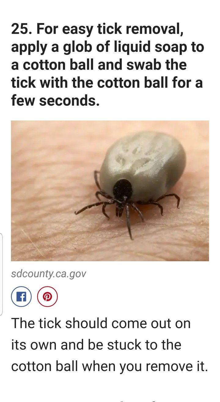 For easy tick removal apply a glob of liquid soap to a