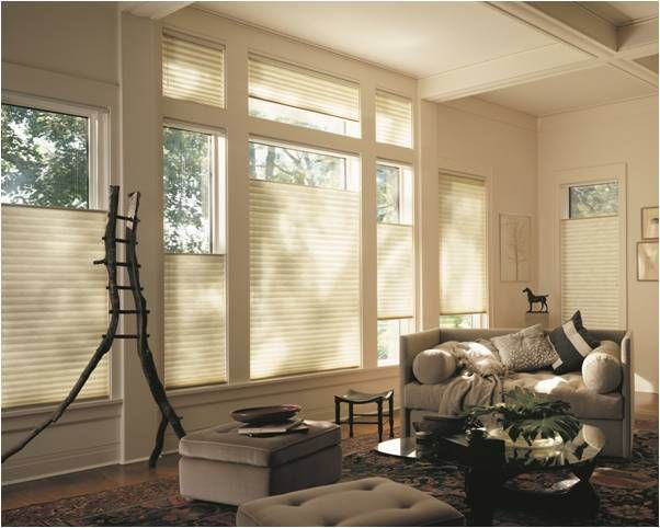 All About Top Down Bottom Up Window Shades Arizona