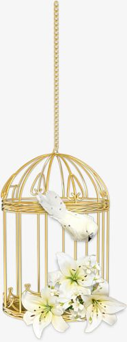 Free To Pull The Cage Material Design Ceiling Lights Bird Cage