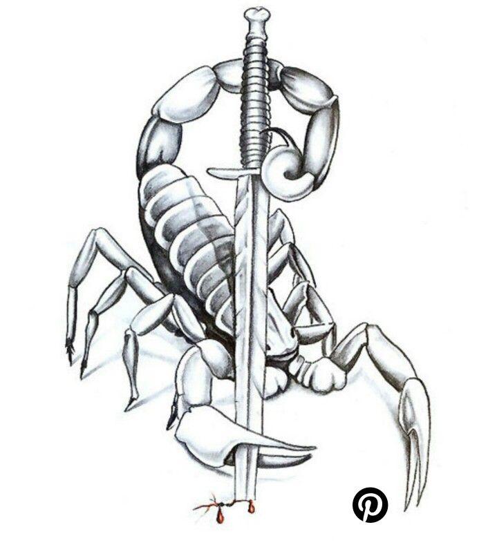 цветовых сочетаний картинки скорпиона для тату новый, прекрасный