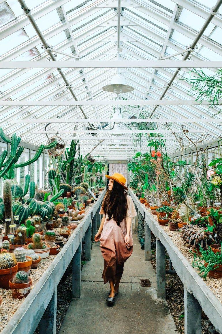 5c9e295fb81ac81c6640de0f531a6543 - City Park Botanical Gardens Plant Sale