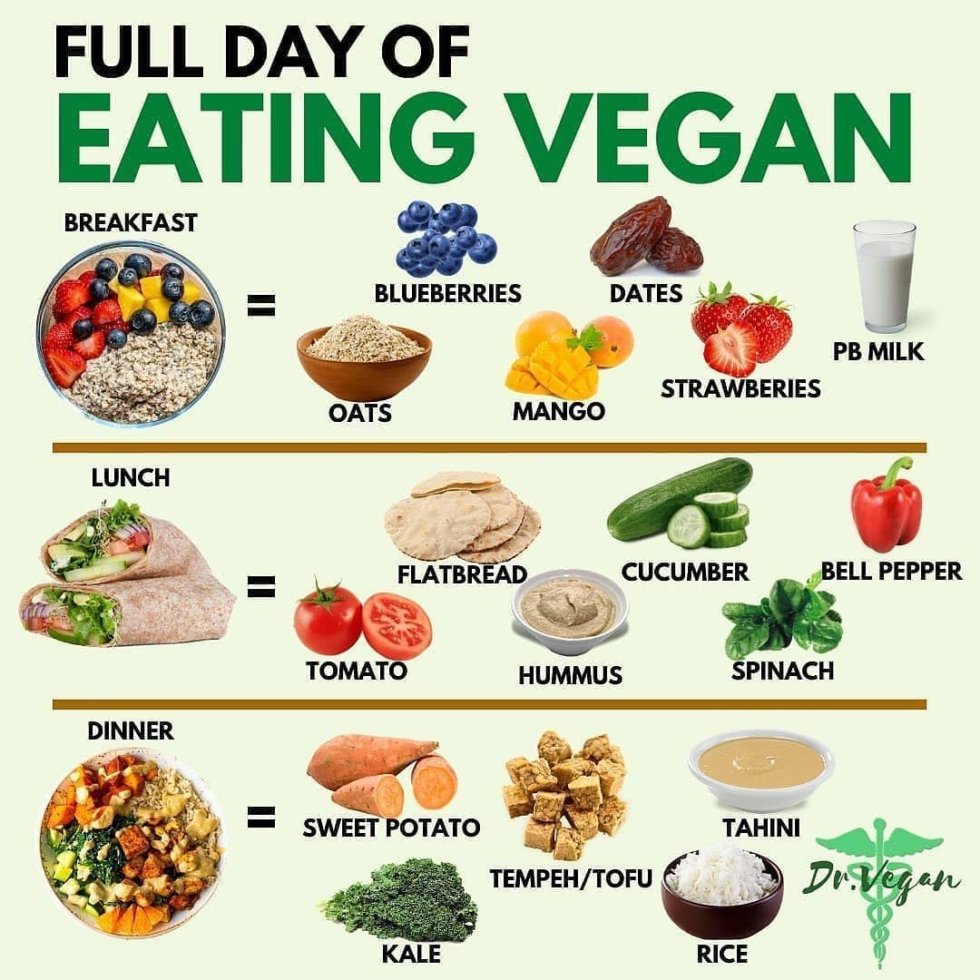 Go Green Go Vegan On Instagram Full Day Of Eating Vegan Note These Meals Are Just Examples To Give You Some Inspiration D Vegan Eating Happy Foods Vegan