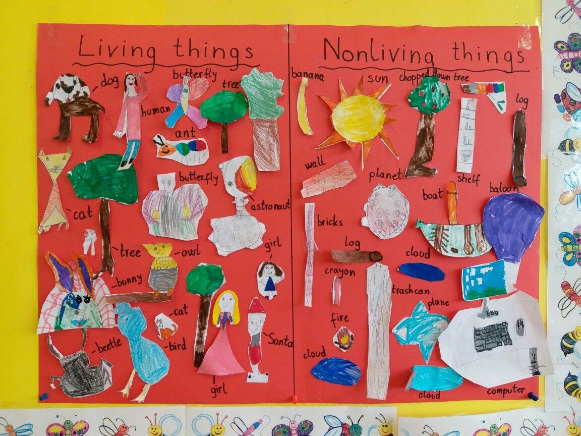 Living And Nonliving Things Poster Living And Nonliving Nonliving Kindergarten Projects [ 864 x 1152 Pixel ]