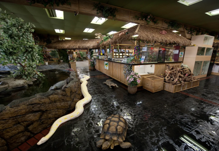This Reptile Zoo In Southern California Is Unlike Anything You Ve Ever Seen Reptile Zoo Reptile Room Fountain Valley