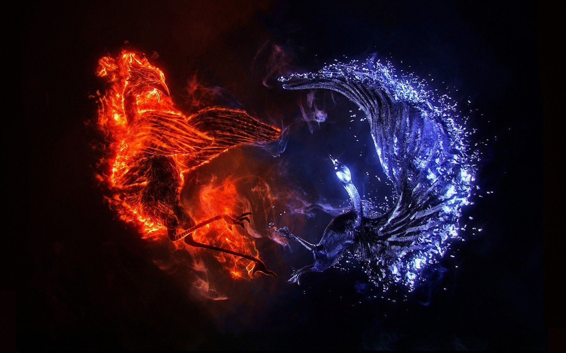 Ice Phoenix Fire Wide Desktop Background Wallpaper Free