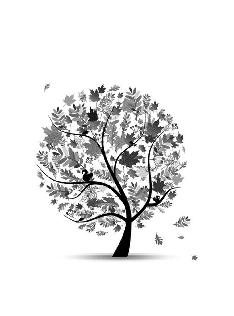 Kindle Paperwhite Screensaver Images | Pinterest | Screensaver