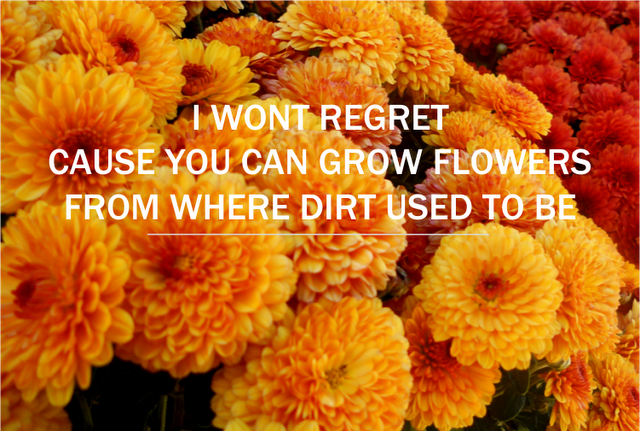 Dirt kate nash lyrics