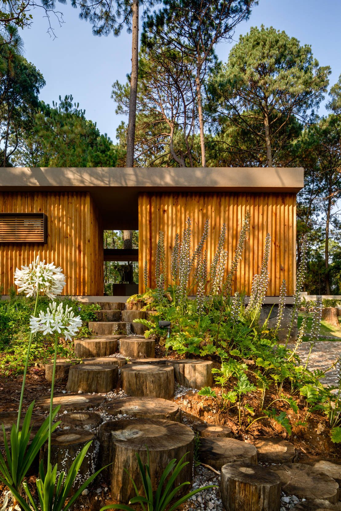 6 Häuser im Einklang mit der Natur   Pinterest   Mutter natur ...