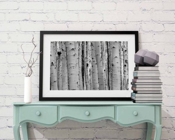 Black and white aspen forest trees wall print giclee fuji fine art decal photograph photo living room office home decor nature landscape